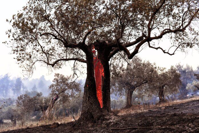ΥΨηλό κίνδυνο πυρκαγιάς