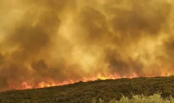 πυρκαγιά Φερές