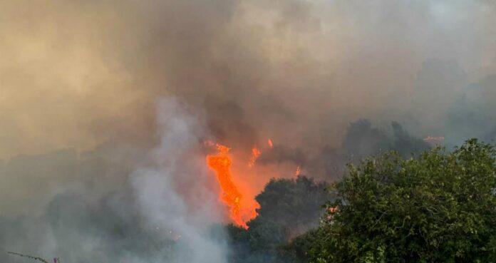 φωτιά στο Γαβαθά