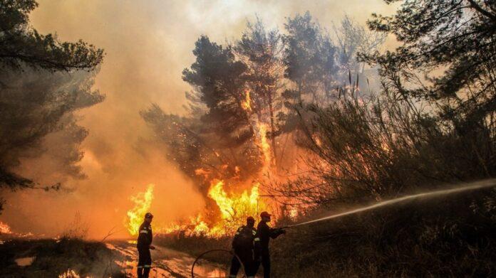 φωτιά στο Οίτυλο