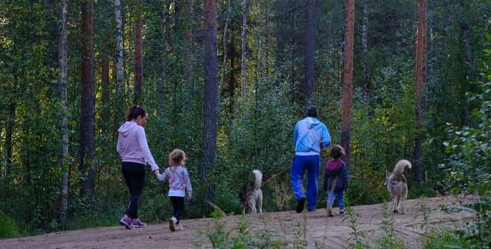 οικογένεια δάσος