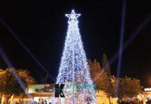 Χριστουγεννιάτικο δέντρο Κεφαλονιά