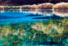 λίμνη πηγών Λούρου
