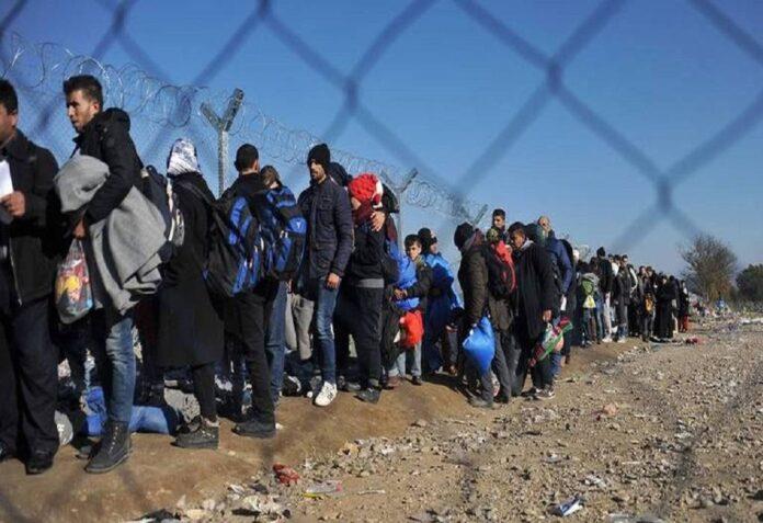 δομή μεταναστών