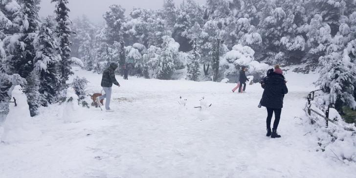 Χιόνια τοπίο
