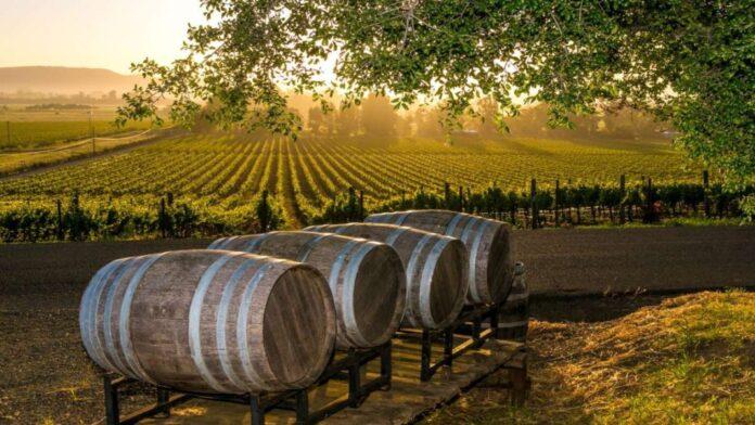 Κρασί βαρέλια