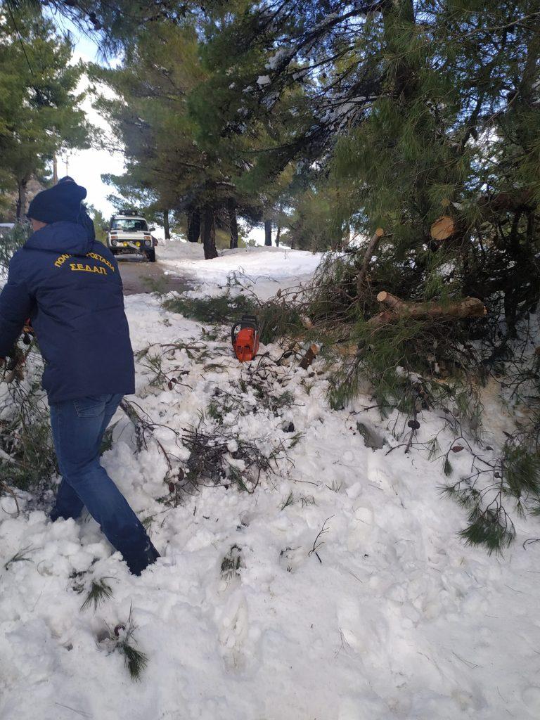 βοηθεια στο χιονι