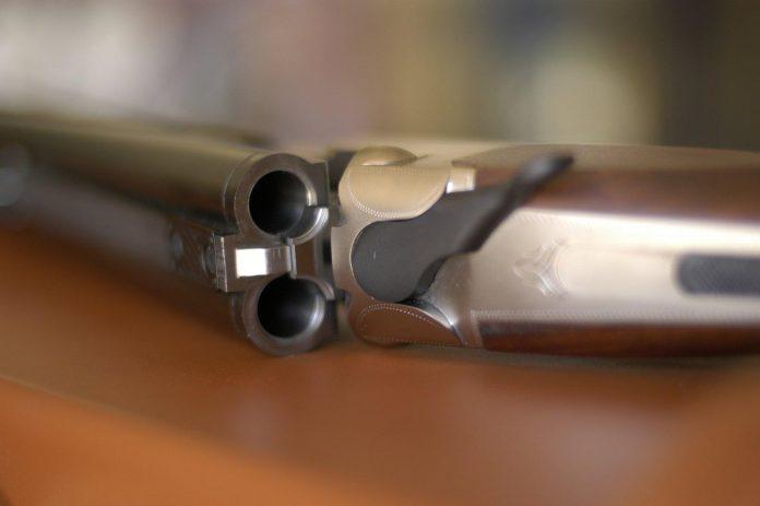 Κυνηγητικό όπλο