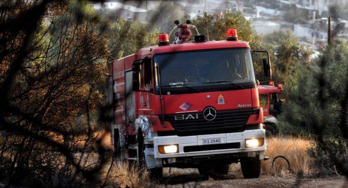 νεκρός άνδρας που καταπλακώθηκε από δέντρο στην Εύβοια