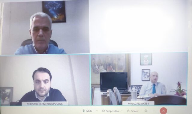 τηλεδιάσκεψη, Καλάκικος-υφυπουργός αγροτικής ανάπτυξης