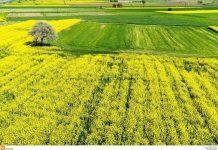 μέτρα στήριξης για τους αγρότες